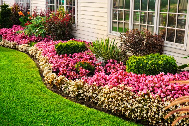 Des idées simples pour créer un jardin moderne