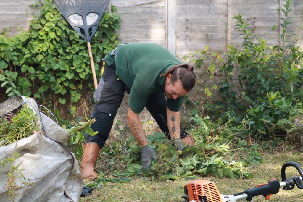 Désherbage : les solutions pour se débarrasser des mauvaises herbes efficacement